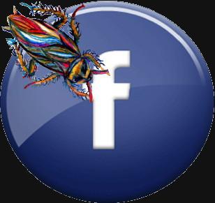 facebookRoach