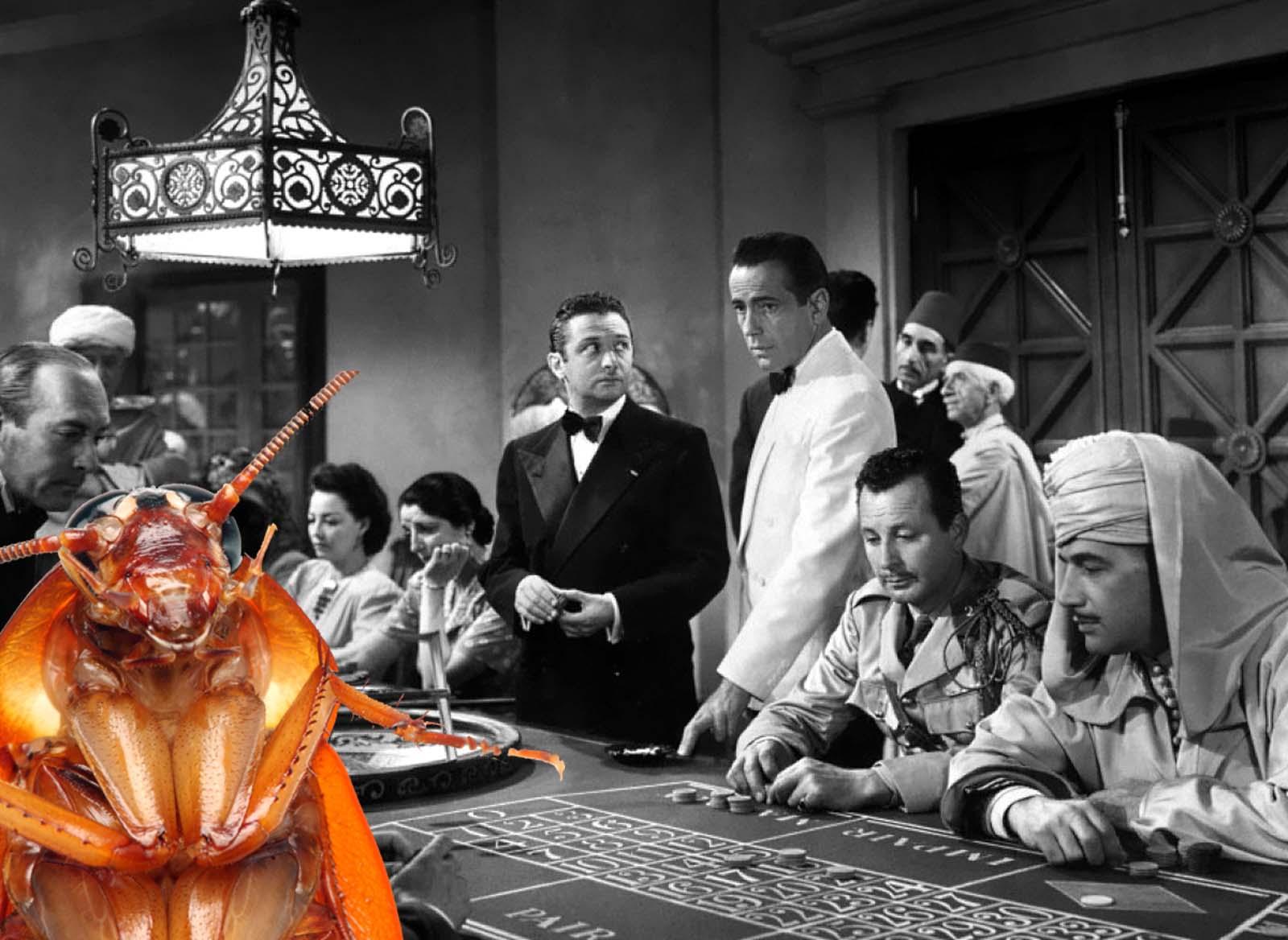 Bogart Roach
