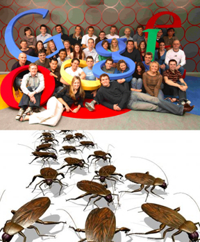 google roach small
